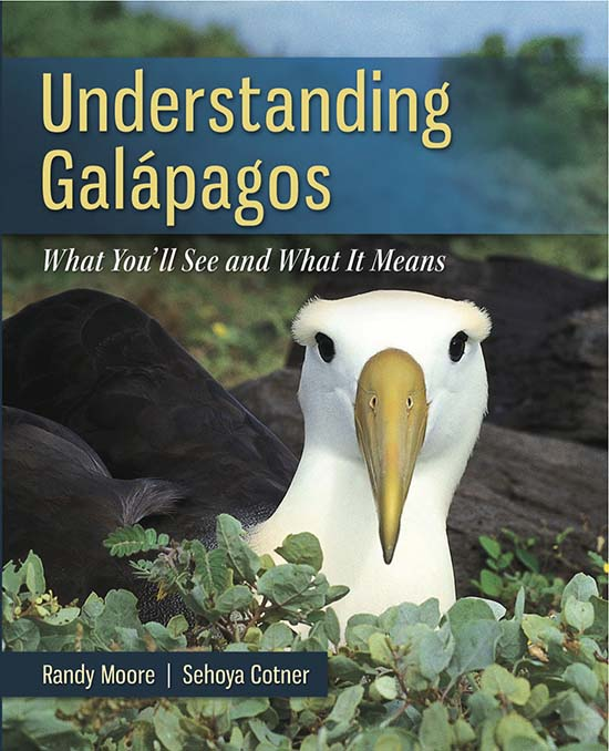 Understanding Galapagos Cover