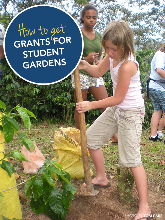 Grants for Student Gardens blog image